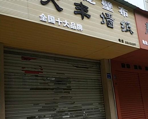元龙壁布浙江温州鹿城区专卖店