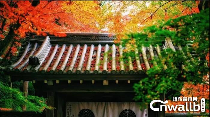沁绣四季软装色调温馨,给家以秋天的感觉!
