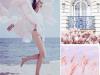 浪漫520,抵挡不住的粉色诱惑,朵薇拉让你置身于粉色的浪漫世界 (4780播放)
