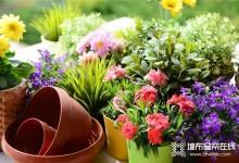 逸绣新品《色彩派对》,带你开启春天的五彩缤纷!