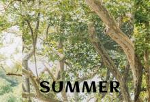 夏日绵长,朵薇拉为居室洒下一些凉意~ (3777播放)