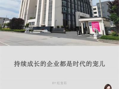 红宝石刘德海:从文化入手寻求企业长青之道!