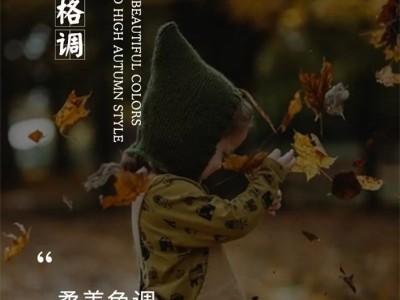 """雅诗澜墙布窗帘:""""柔美色调,温馨且高级的秋日格调"""""""