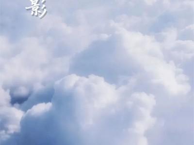 雅菲壁布新品——提花独幅:云屏风影